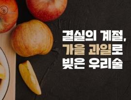 결실의 계절, 가을 과일로 빚은 우리술