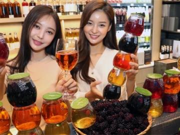 탄산 복분자주, 망치로 깨 먹는 술… 이색 전통주에 빠진 2030