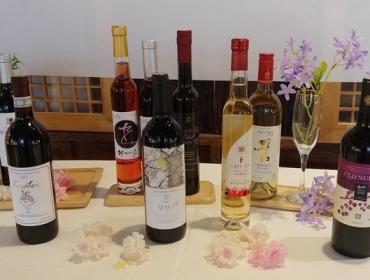 전통주갤러리 [칼럼] 2019년 '인싸' 술꾼들의 선택은 한국 와인