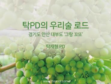[탁PD의 우리술로드] 경기도 안산 대부도 '그랑 꼬또'